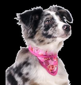 Aqua Coolkeeper Honden Koel bandana Roses