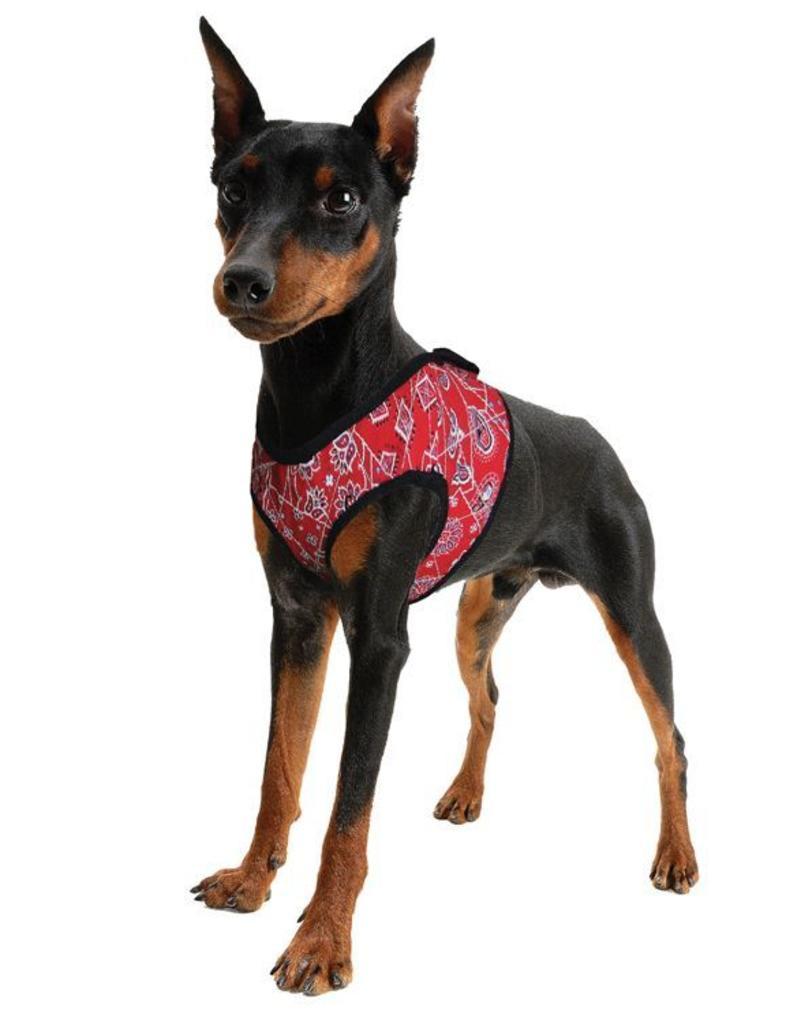 Aqua Coolkeeper Honden Koeltuigje Red Western