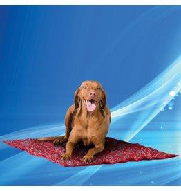 Aqua Coolkeeper Dog Cooling pad Red Western
