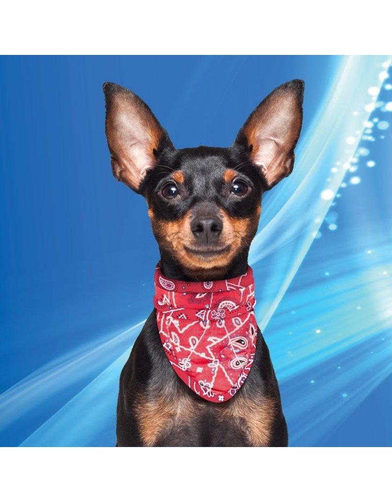 Aqua Coolkeeper Cooling pet bandana Red Western