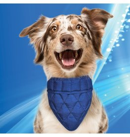 Aqua Coolkeeper Honden Koel bandana Pacific Blue