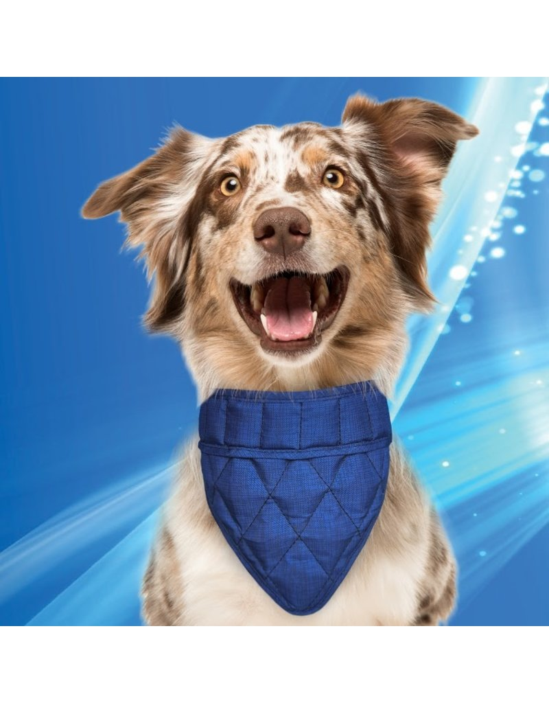 Aqua Coolkeeper Cooling pet bandana Pacific Blue