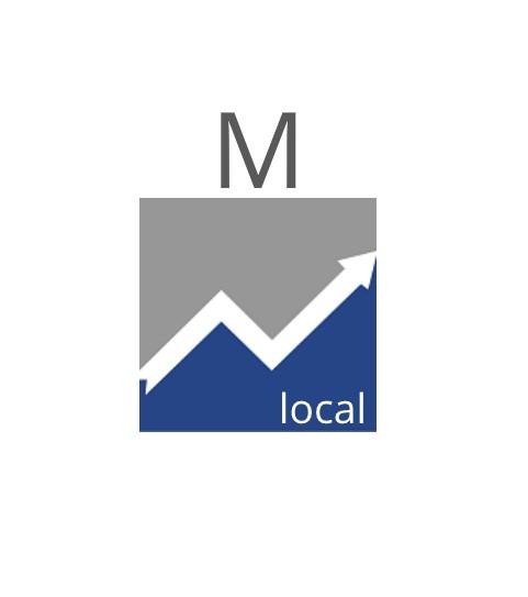 SEO Paket Local M (12 Monate)