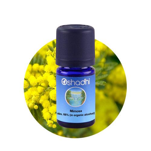 OSHADHI AROMATHERAPY Mimosa abs. E.O.