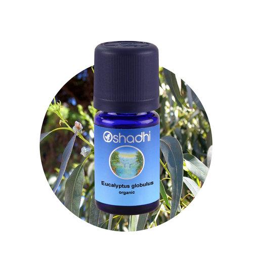 OSHADHI AROMATHERAPY Eukalyptus Globubus bio E.O.