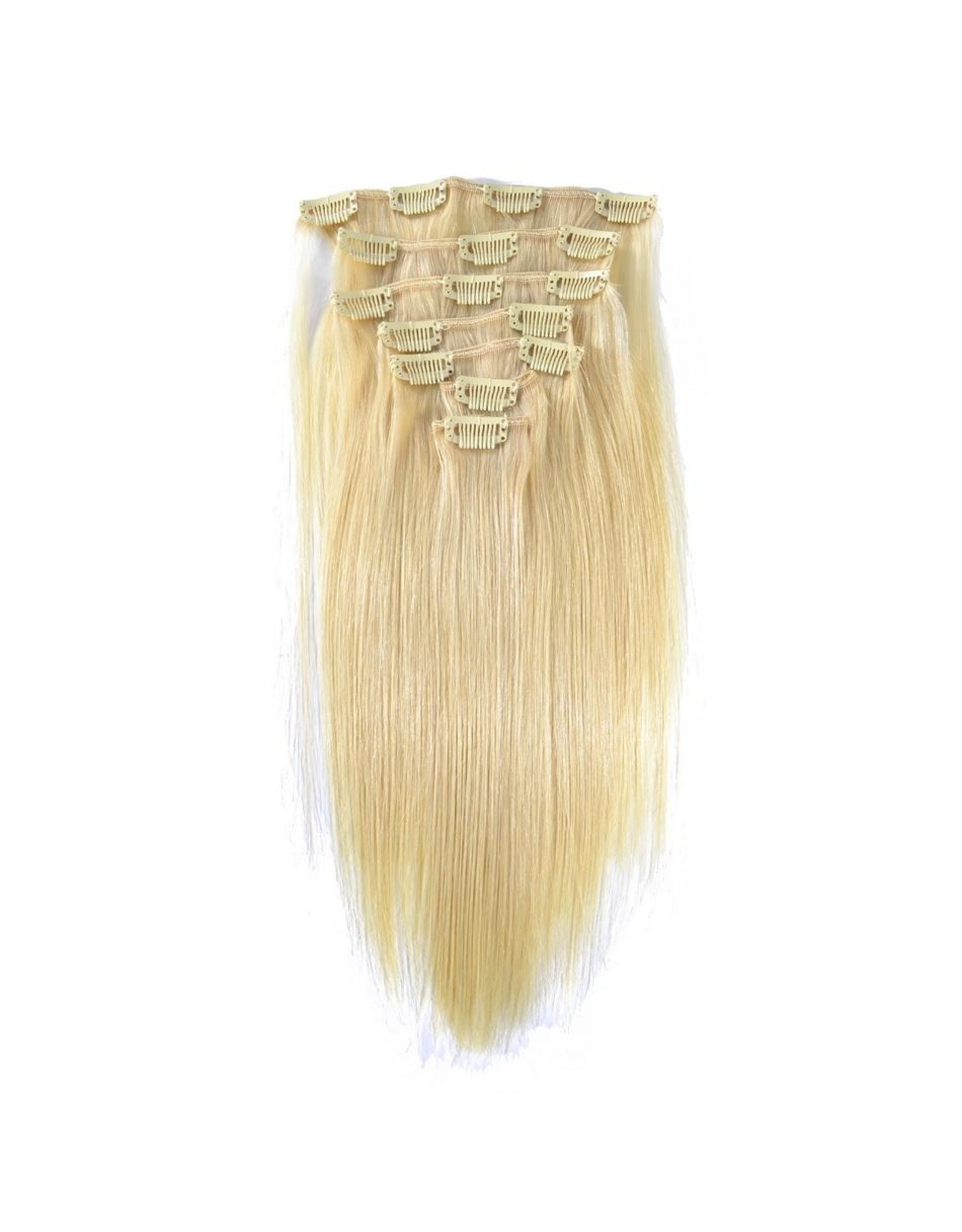 613 Blonde Natural Straight Clip Ins