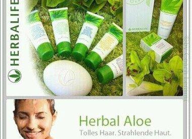 Herbalife - HERBAL ALOE