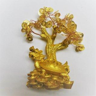 Geldbaum / Glücksbaum - 20-23 cm
