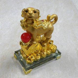 Goldener Hund für Wohlstand mit Münzen ca. 14x9x20cm