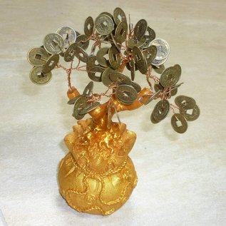 Денежное Дерево 20 см
