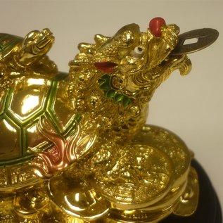Drachenschildkröte auf Münzen 5x6x6cm