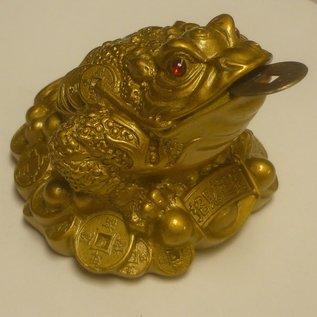 golden money frog , 7x5cm