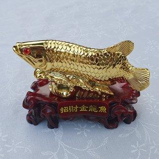 goldener Arowana-Fisch für Überfluss an Reichtum und Wohlstand, ca.12x8x5,5cm