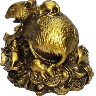 Ratte auf Münzen