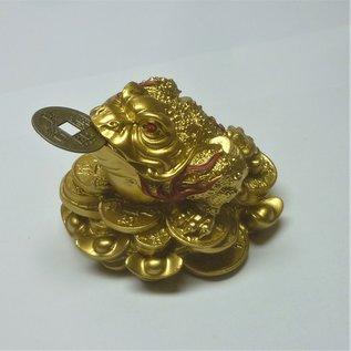 golden money frog , 8x6cm