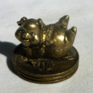 lucky pig with coin