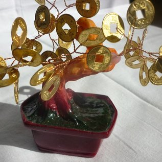 Money tree with coins, 15cm