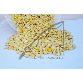 Mag ik effe vangen Witte Mais