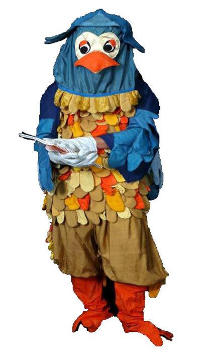 Meneer de uil kostuum huren
