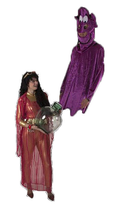 Geest uit de fles kostuum huren - 305