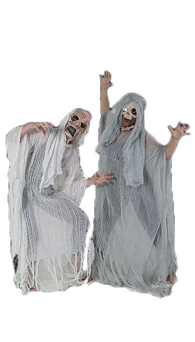 Geesten kostuum - 439