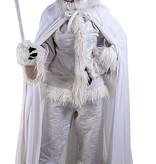 The Masked Singer IJskoning kostuum huren