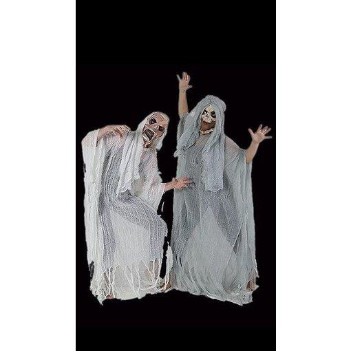 Geesten kostuum