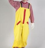 Ronald de clown