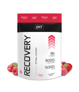QNT Recovery Powder