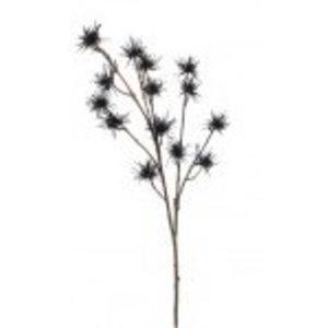 Distel Tak 69cm Zwart