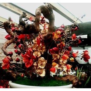 Lampionnetjes Tak 100cm Warm Oranje. Ontdek onze nieuwe collectie Kunstplanten. Lage prijzen, snelle levering.