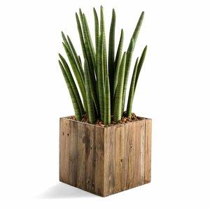 Houten plantenbak vierkant model maat XL