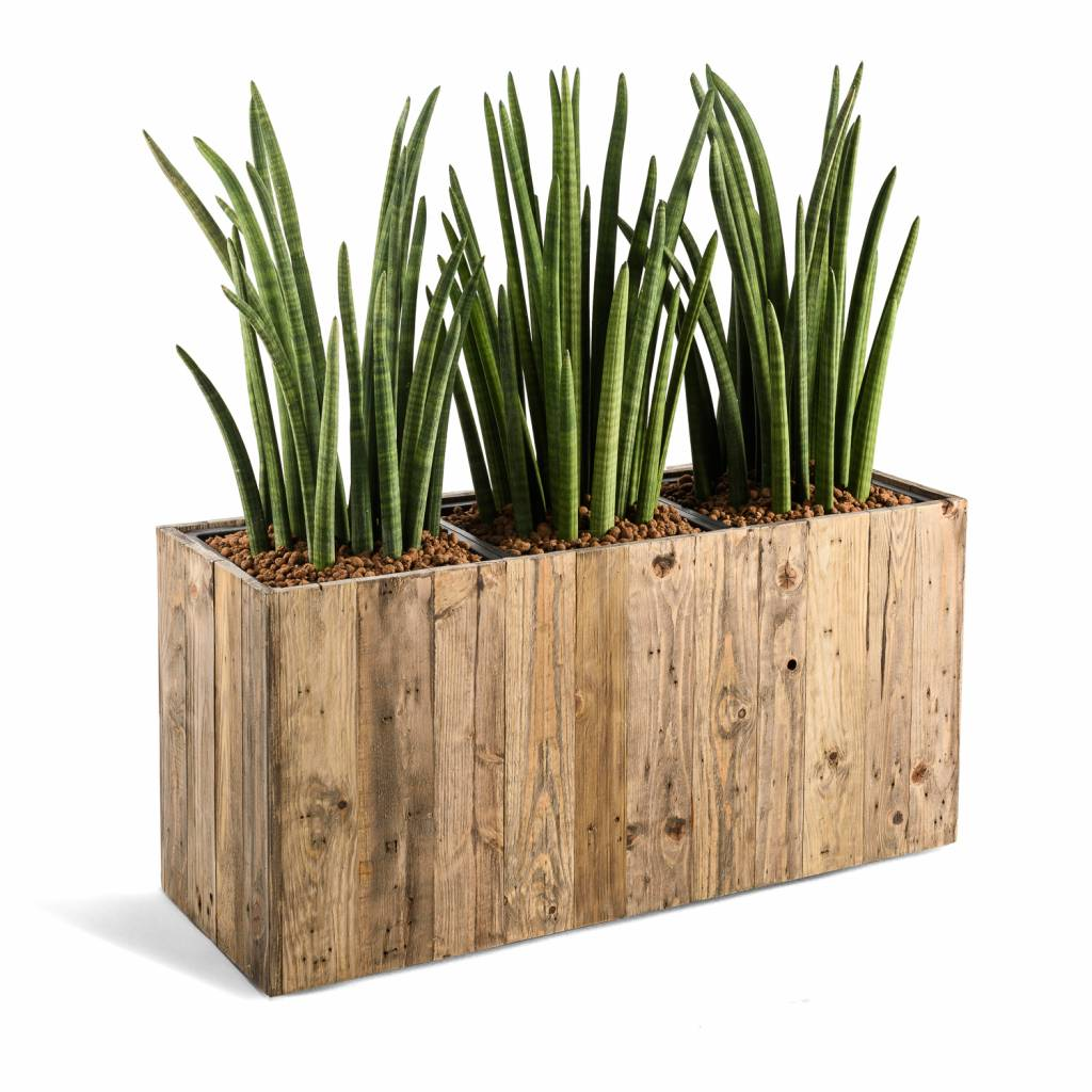Beroemd Plantenbak Voor Binnen. Best Tjinco Plantenbak Bloembak Frame Nola @MF66