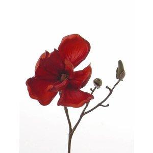 Magnolia Tak 25cm Warm Rood