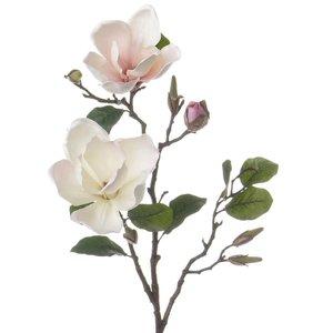 Magnolia Tak 72cm Wit Roze