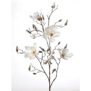 Magnolia Tak 107cm Creme Wit