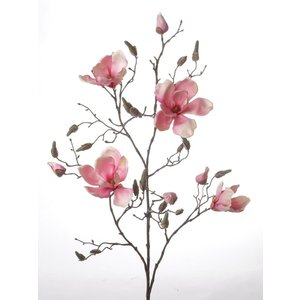 Magnolia Tak 107cm Roze