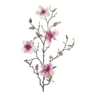 Magnolia Tak 78cm Wit Roze