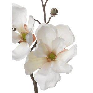 Magnolia Tak 48cm Creme Wit