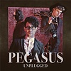 Pegasus - Unplugged - Audio-CD