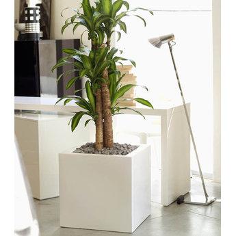 Vondom Cubo  60 x 60 x 60 plantenbak