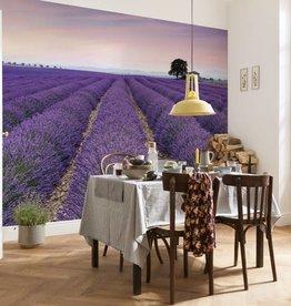 Flower & Textures Fotobehang Komar Natuur Behang Provence