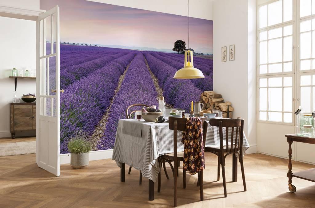 Flower & Textures Edition 1 Fotobehang Komar Natuur Behang Provence