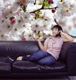 Flower & Textures Fotobehang Komar Bloemen Behang Spring XXL