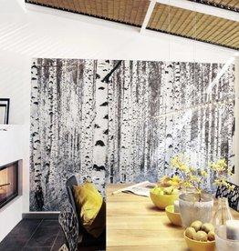 Munich Design Fotobehang Komar Natuur Behang Woods