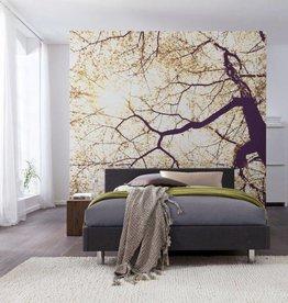 Munich Design Fotobehang Komar Natuur Behang Sunshine