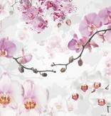 Into Illusions Edition 2 Fotobehang Komar Bloemen Behang Allure