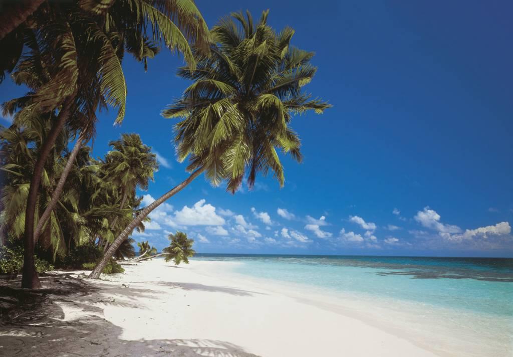 Scenics Edition 2 Fotobehang Komar Natuur Behang Maldives