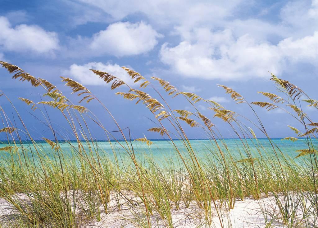 Scenics Edition 2 Fotobehang Komar Natuur Behang Ocean Breeze