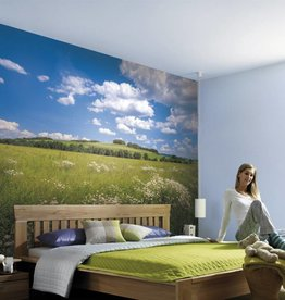 Scenics Edition 2 Fotobehang Komar Natuur Behang Meadow